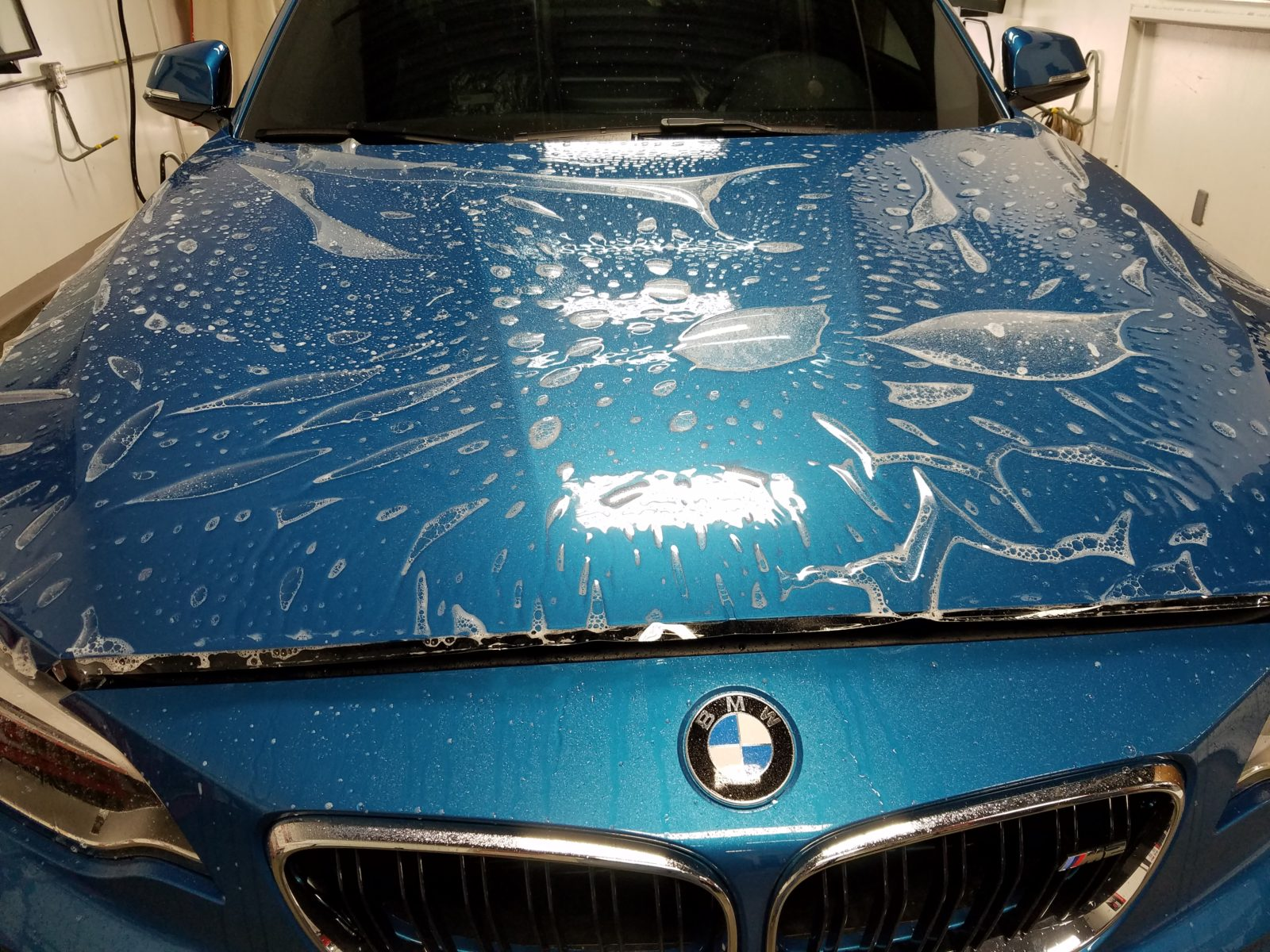 xpel paint protection film reviews