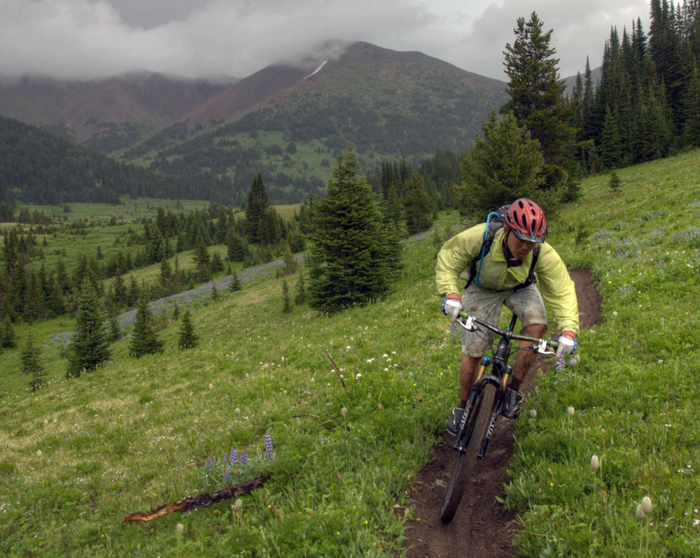 continental mountain king ii 29 2.4 review