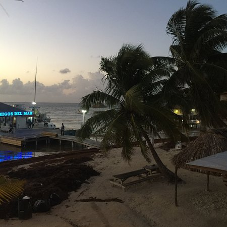 conch shell inn belize review